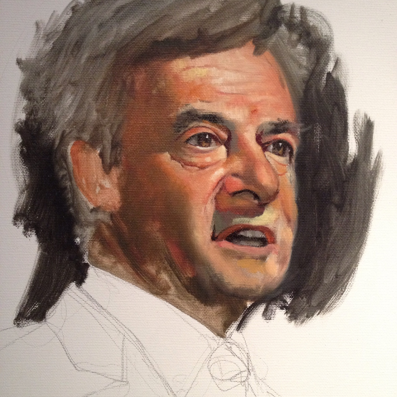 Portraits politiques